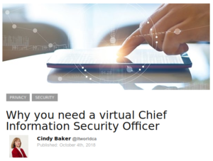 Why you need a virtual Chief Information Security Officer.